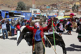 Man wearing a mask and dead Andean condor (Vultur gryphus) dancing with suri sikuris group at Chutillos festival, Potosí, Bolivia