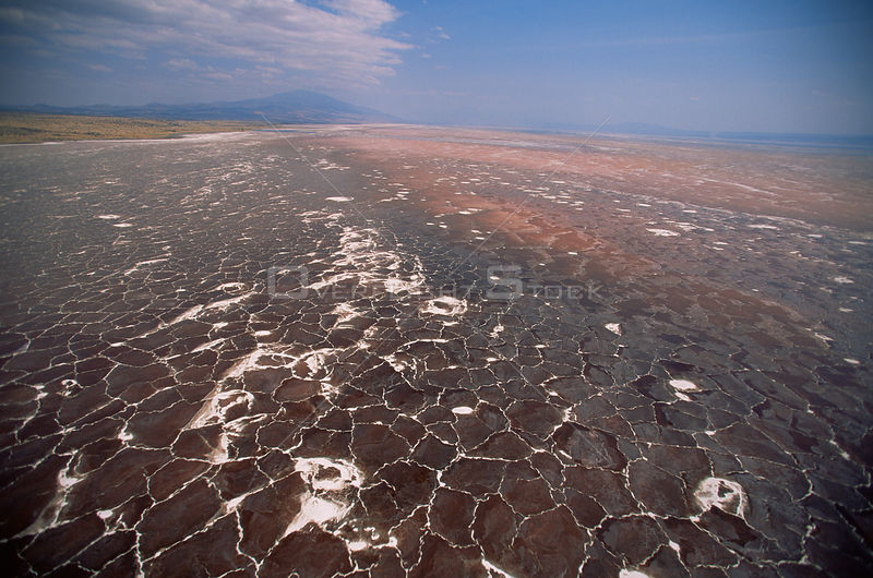 Aerial view of Lake Natron showing mineral deposits, Tanzania