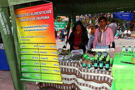 Stall with poster listing vitamins found in coca leaves at trade fair promoting alternative coca leaf products , La Paz , Bolivia