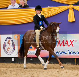 The M&M Working Hunter Pony of the Year, Horse of the Year Show 2010