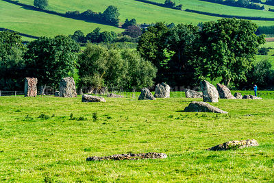 Section of Neolithic Stone Circle (2)- Stanton Drew, England