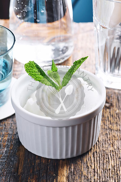 Overhead view of white sorbet with mint garnish