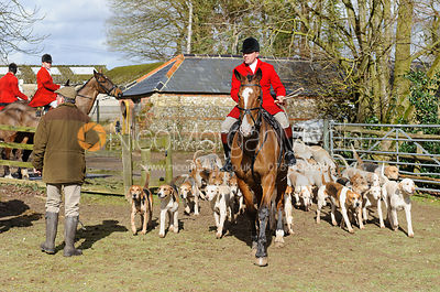 The Wilton Hunt at South Allenford Farm 4/3 photos