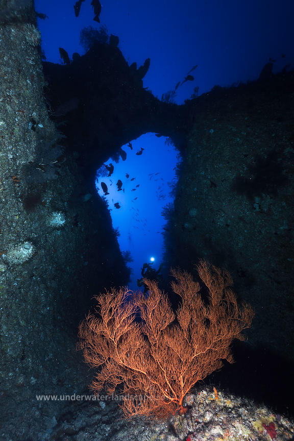 Underwater world - The Arch : 88m deep