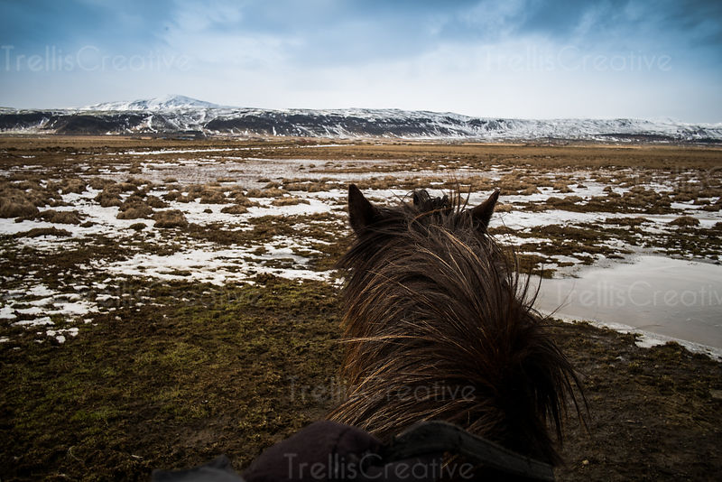 Man sits on horseback riding in the frozen landscape in Iceland.