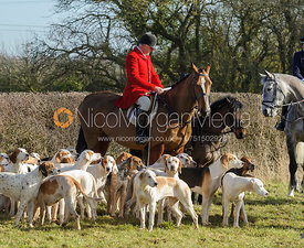 Followers at the meet at Cream Gorse Farm