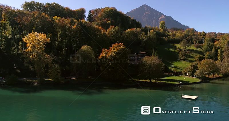 Lake coast 4k aerial rising view of a colorful autumn color forest, revealing a mountain, in the Alps, on a sunny fall day, near Spiez, in Berner Oberland, Switzerland