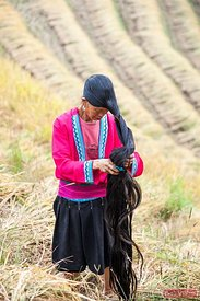 Yao ethnic minority woman on rice terrace
