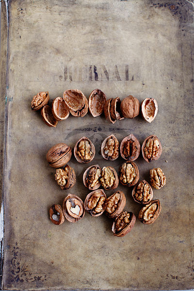 Walnuts Photos