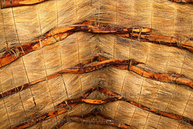 Detail of roof construction inside church at Cotasaya, Sajama National Park, Bolivia