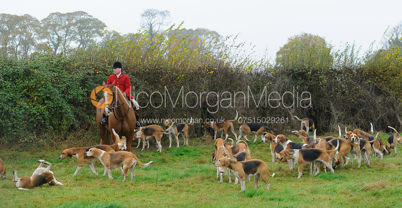 The Belvoir Hunt opening meet, Long Clawson 7/11 photos
