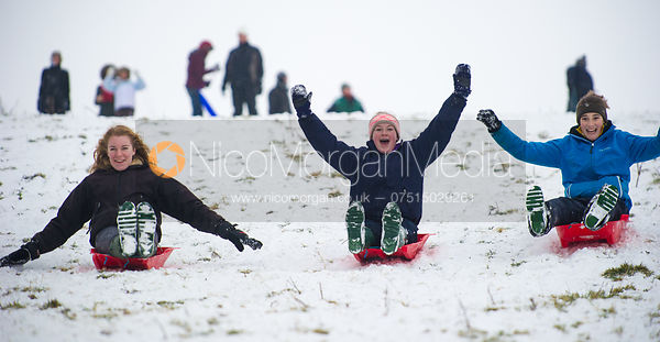 Girls sledging on Burrough Hills, Leicestershire