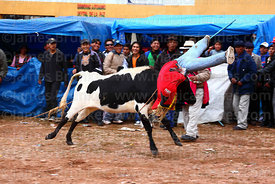 Spectators watch as a bull tosses a dummy into the air in the main square at festival in Caquiaviri, Bolivia
