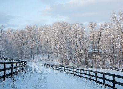 Canyon_Farm_Winter-NAW_3766-December_25_2012