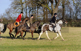 The field in Aswarvy Park - The Belvoir Hunt at Aswarby