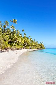 Beautiful tropical sandy beach with palm trees, Fiji