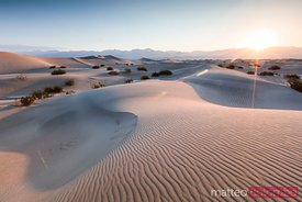 Sunrise at Mesquite Flat Sand Dunes, Death valley, USA