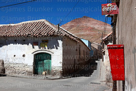 Rustic colonial house, dog and Cerro Rico, Potosí, Bolivia