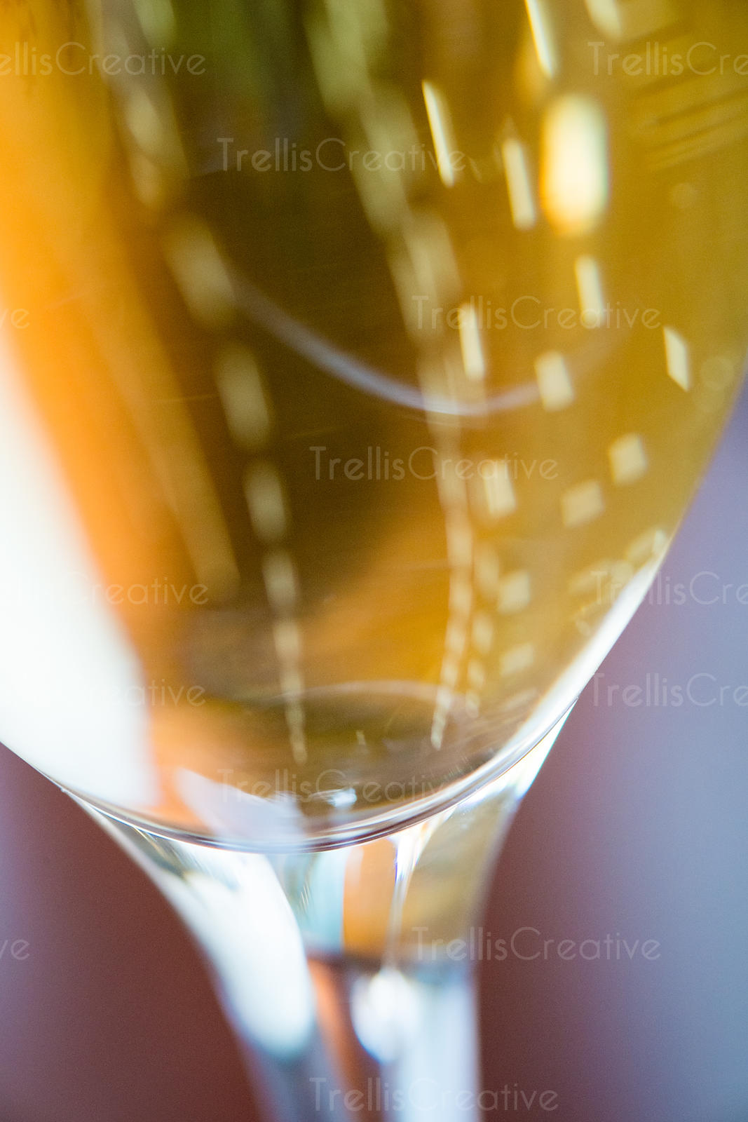Close up of sparkling wine bubbles in a champagne flute