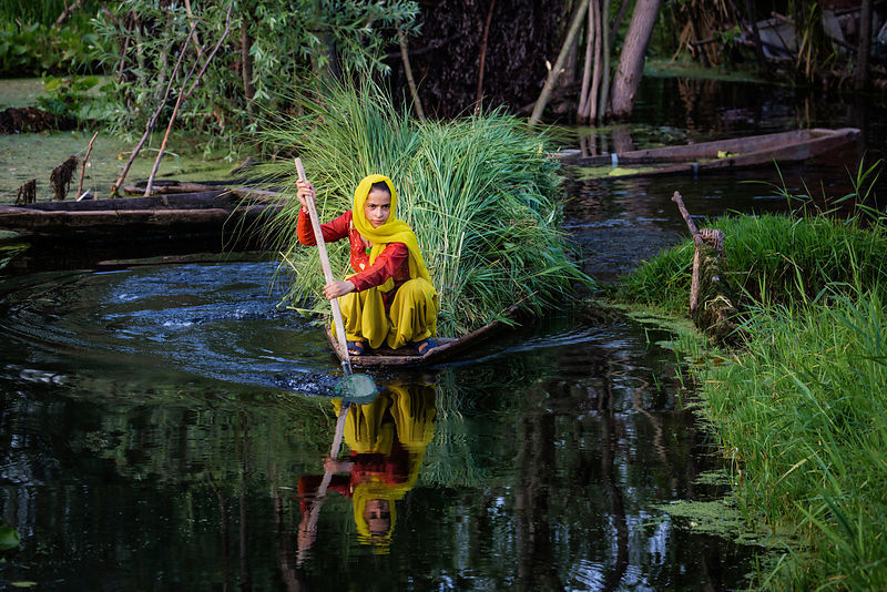 Woman in a Shikara on Dal Lake
