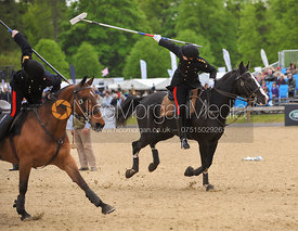 Captain Billy Morley tent pegging at Royal Windsor Horse Show
