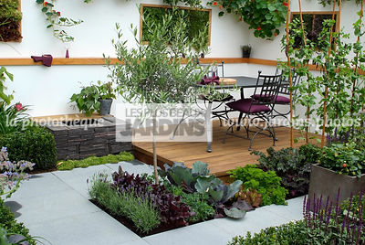 Allotment, Contemporary garden, Garden chair, garden designer, Garden furniture, Garden table, Mini potager, Mini Vegetable garden, Olive tree, Parsley, Pavement, Small garden, Urban garden, Vegetable patch, Vegetable plot, Wooden Terrace, Digital, Ironwor