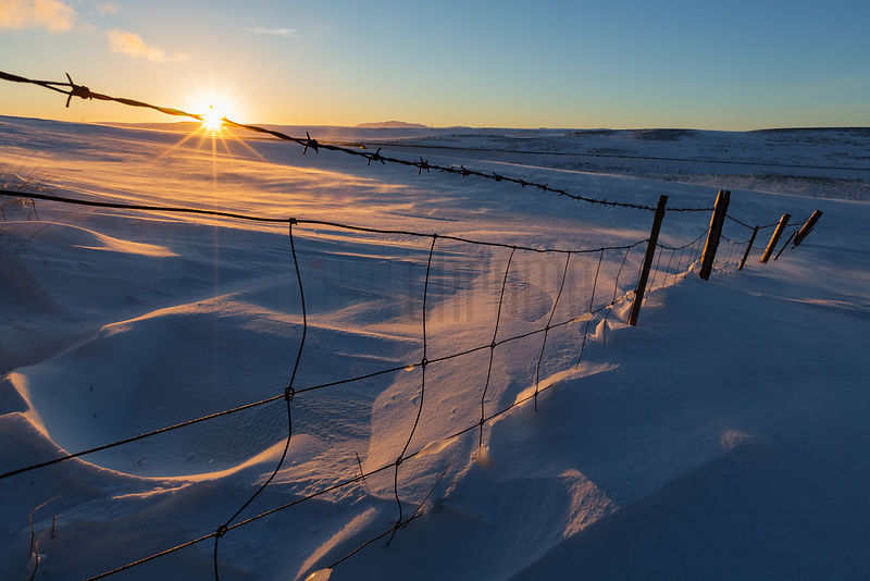 Snowy Fenceline at Sunrise