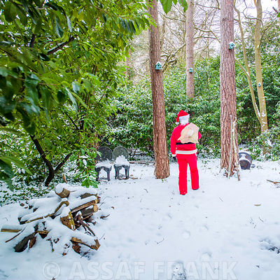 Santa in Snow photos