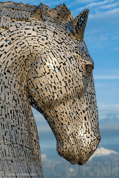 The Kelpies head