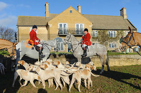 Huntsman and hounds in front of Town Park Farm