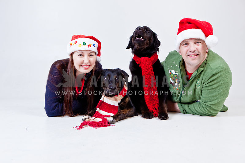 Dogs with Family photos