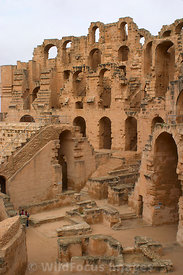 Southern end of the amphitheatre of Thysdrus, El Jem, Tunsia; Portrait
