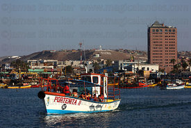 Tourists taking boat trip around fishing port, Arica, Region XV, Chile