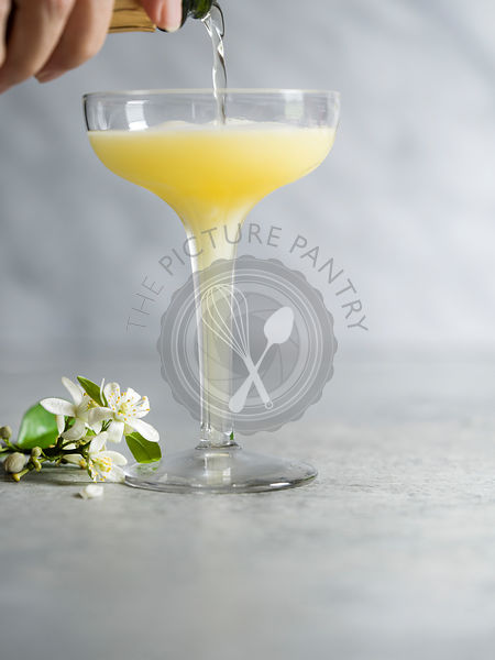 Pouring champagne into a mimosa in an antique coup glass with orange blossom garnish.