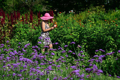 Woman in Flower Garden with Pink Hat