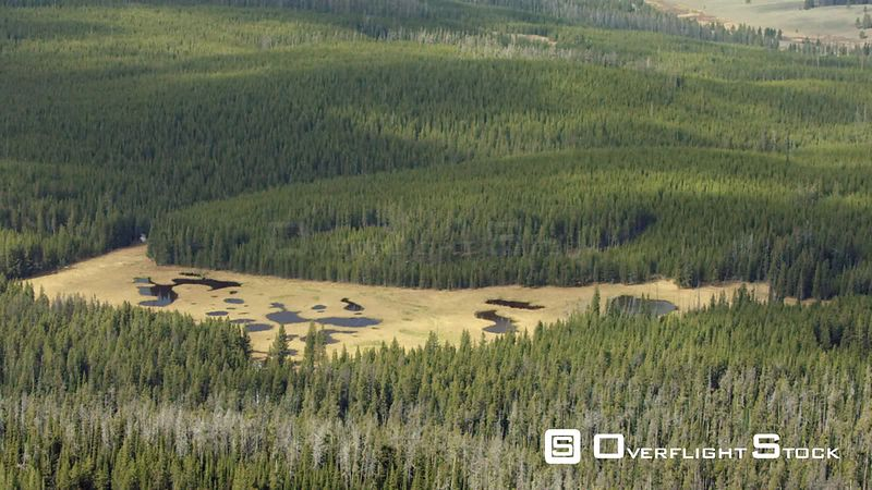A group of mountain ponds sit in a meadow in on the western edge of Yellowstone National Park