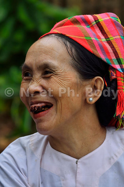 VIETNAM, VILLAGE ETHNIE THAI//Vietnam, Thai Ethnic Group Village
