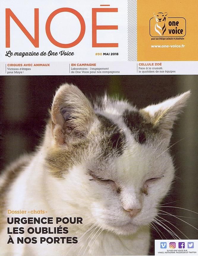 NOÉ, One Voice magazine (France) - May 2018 photos