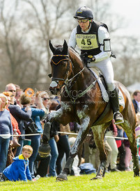Joseph Murphy and ELECTRIC CRUISE - Cross Country - Mitsubishi Motors Badminton Horse Trials 2013.