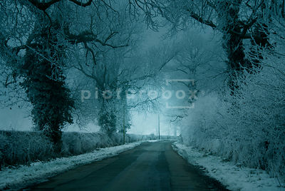 An atmospheric image of hoar frost covered trees and hedgerow down a misty, empty road, in winter.