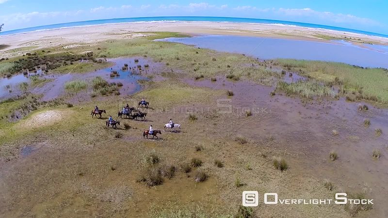 Aerial shot of a group on a horseback safari in St Lucia St Lucia. KwaZulu Natal South Africa