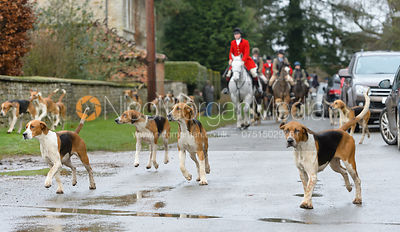 The Belvoir Hunt at Buckminster 4/1 photos
