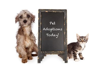 Rescue Pets With Adoption Event Sign