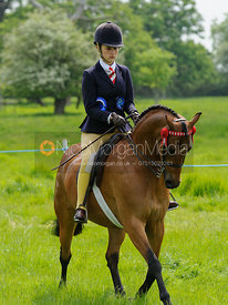 Championship 6 - Anglo and Part Bred Arab Championship - Baston South Lincs Show 2016