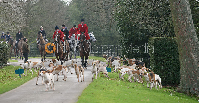 The Quorn Hunt at Lowesby Hall 10/2 photos