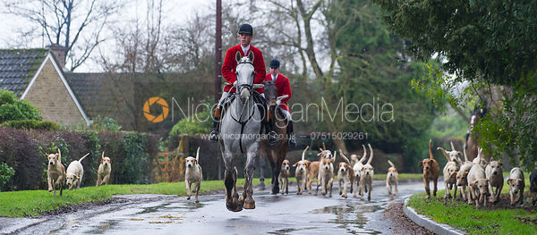 Robert Medcalf and the Cottesmore Hounds- The Cottesmore Hunt at Belton-in-Rutland 21/12