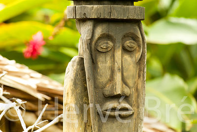 Wooden sculpture in Banks rainforest, Vanuatu archipelago