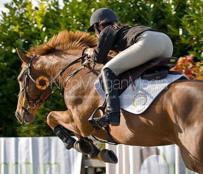 Horses and ponies Equestrian Stock Images