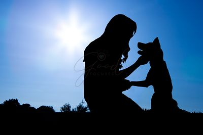 Silhouette of Girl With Dog in Morning Sunrise
