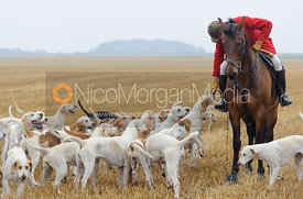 Andrew Osborme MFH and the Cottesmore hounds - The Cottesmore Hunt at Tongue End 28/8